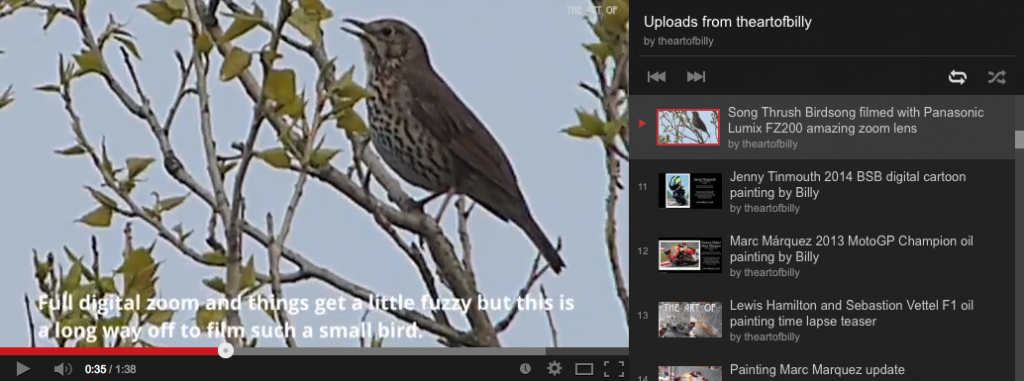 Song Thrush Bird Song Video by Billy